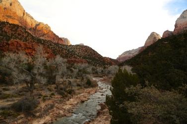 Creek in Zion